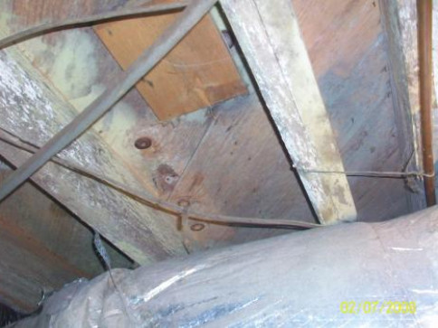Crawl Space Mold